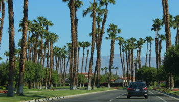 blog-header-PalmSprings